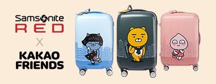 카카오여행가방