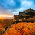 가을엔 일본<br /> 오사카 자유여행!