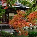 가을 일본여행 특가!<br /> 유후인 온천에서~