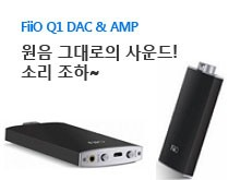 Fiio Q1 DAC 앰프