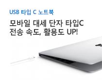 USB타입C 노트북 상품 카테고리