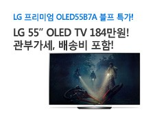 LG 55인치 OLED TV 블프 특가