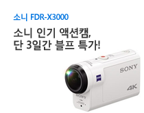 소니 FDR-X3000 할인