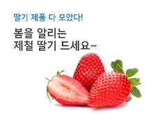 제철 딸기 기획전