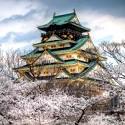 오사카 즐기는법!<br /> ✿벚꽃여행✿