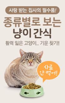 고양이 간식 - 인포그래픽