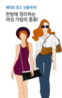 한방에 정리하는 여성 가방의 종류!