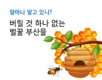 벌꿀 부산물 인포그래픽