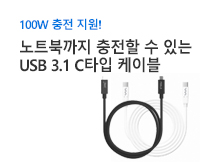 100W 충전 지원 3.1 Type C 케이블