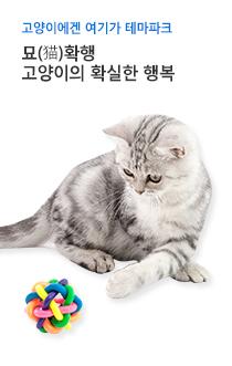 고양이 놀이용품 기획전