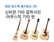 어쿠스틱 기타(Guitar) 인포