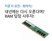 삼성 RAM<br />