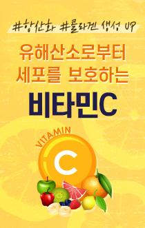 비타민C 인포