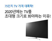 초대형 TV 구매팁