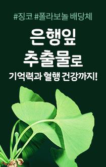 은행잎 추출물로 기억력과 혈행 건강까지!