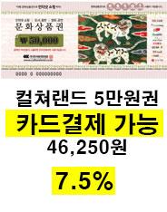 카드결제가능 컬쳐랜드 5만원권   →46,250원