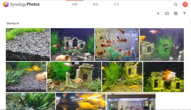 개인과 기업 모두에게 적합한 사진 관리 소프트웨어 '시놀로지 포토'