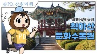 송PD] 홍천 척야산 문화수목원  홍천 독립운동의 발자취 [PlayG / 플레이지]