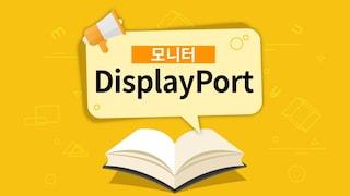 모니터의 DisplayPort(DP포트)란? [용어설명]