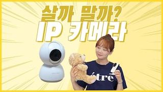 혼자 있는 우리집 댕댕이, 야옹이~ IP 카메라로 케어가 가능할까? [살까?말까?]