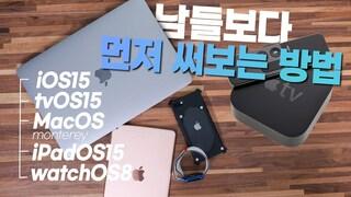 애플 모든 디바이스 퍼블릭베타 설치 튜토리얼 (아이폰, 아이패드, 애플TV, 애플워치, 맥북)