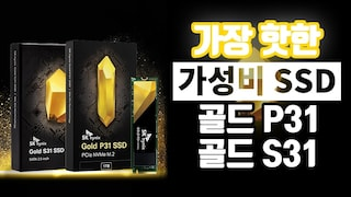 SSD 고민 중이라면 이거 쓰세요!! SK하이닉스 Gold P31, S31
