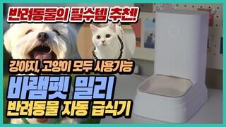[리뷰] 반려동물 자동 급식기 바램펫 밀리 실사용 리뷰 (강아지, 고양이) | 사료 저울 다이어트 반려견 반려묘