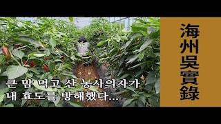 해주오씨 후손이 살아가는 법 ep.4 [직장인 브이로그 / 귀농 / 고추농사/ 농사의자 / 불효녀]