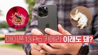 말이 필요해? 아이폰13 Pro 그래파이트 카메라 써봤어요! 냥이 키우는 가족에게 추천 必