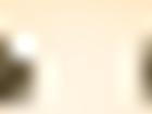 [오늘 하루/164만원대] 삼성 갤럭시북 플렉스2 NT950QDA-X71AZ, 11번가 시선집중 특가진행