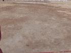 오징어 게임하는 러시아인