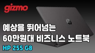 예상을 뛰어넘는 60만원 대 비즈니스 노트북. HP 255 G8 리뷰